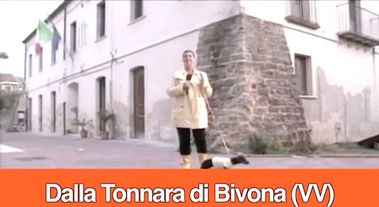 Petix da Bivona