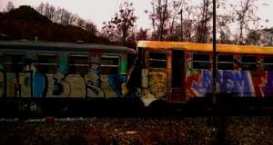 treni-calabria