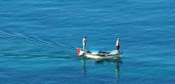 pesca nicotera