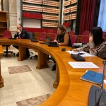 intervento in commissione nesci (1)