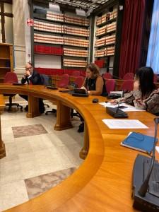intervento in commissione nesci (1)