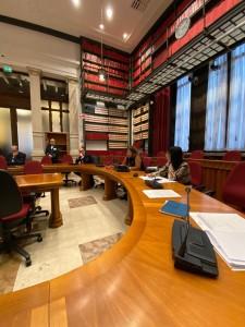 intervento in commissione nesci (2)