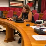 intervento in commissione nesci (3)