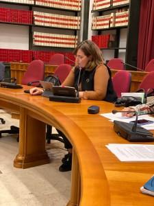 intervento in commissione nesci (3)